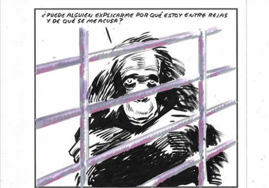 Dibujo de El Roto.